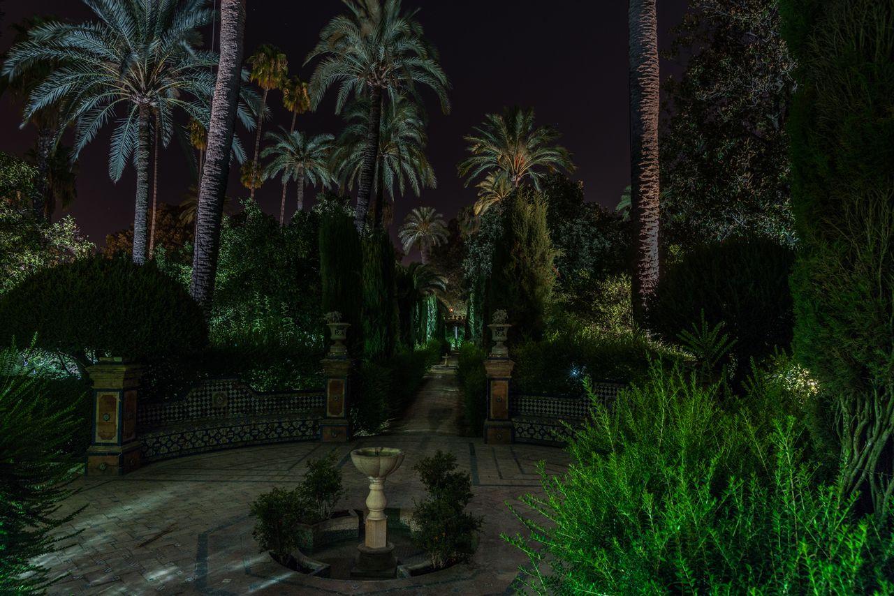 Jardín a oscuras